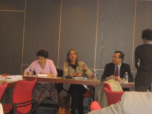 Audition de Mme Saragosse, Directrice de TV5